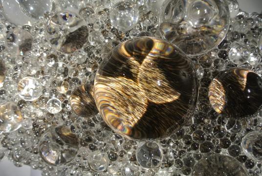 仿佛透过细胞看出生物被散射后的表面细节