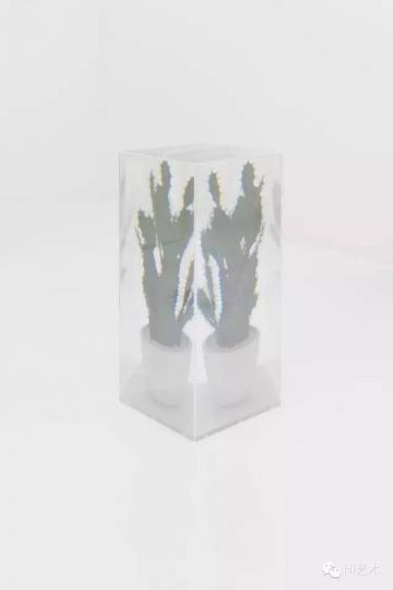 名和晃平 《PixCell[Toy-Cactus#2] 》102.1x 46.3x46.3cm 亚克力盒子、塑料仙人掌 2011