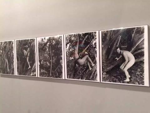 迈阿密当地画廊 Fredric Snitzer Gallery