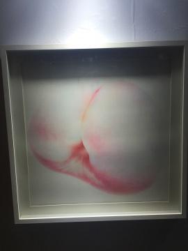 张盾 《桃-40》 70×70cm 纸上作品 2014
