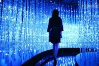 佩斯新画廊新项目玩转高科技   硅谷能否迎来艺术春天