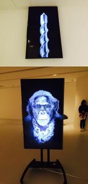 叶凌瀚2013及2012年作品《旋转体和克莱斯特》、《闪闪发光的杰克》