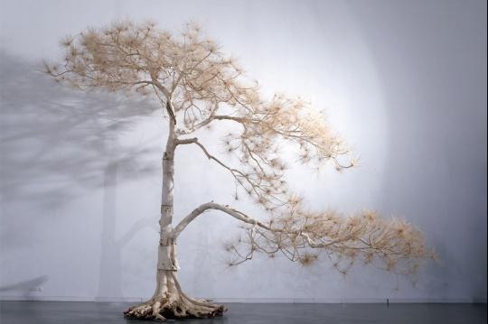 史金淞 07- 6.2米迎客松,620x 820x 360cm 各种树木、柳树枝、树根、不锈钢螺丝等2007