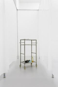 《铅脑袋》 装置铅、不锈钢手推车、垃圾袋、洗手液、调羹、抹布、蜗牛、刮胡刀49×24×80 cm2016
