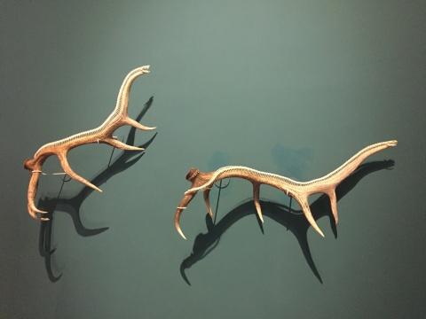 由鹿角、蛇骨创作的《恐龙》系列