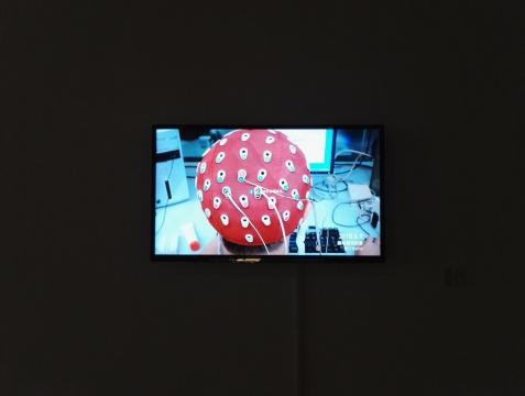 吴珏辉《器官计划》 尺寸可变 视频短片 2016