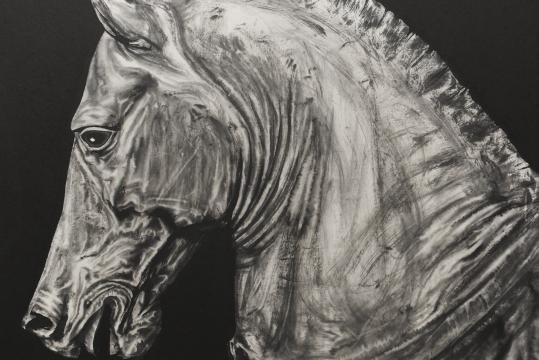《马的肖像2》(局部) 纸本水墨 97×90cm 2016