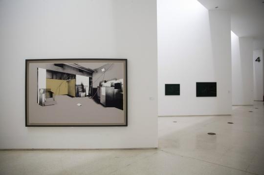 塔提亚娜·图薇《惶然》系列, 铅笔绘画、漂白, 169x255x7cm, 2013