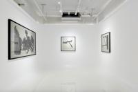 王川水墨展力利记开幕 呈现艺术家三十年创作缩影,王川