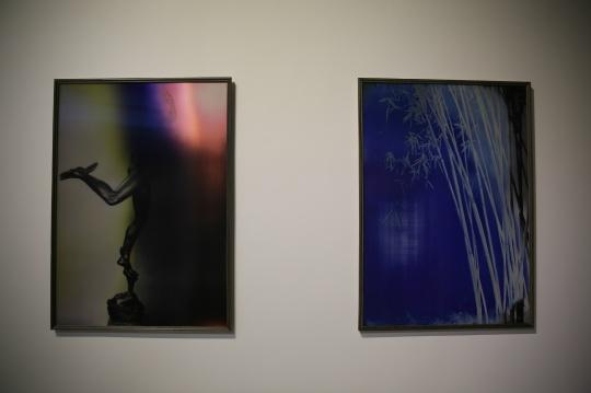 相对于早期的作品,韩磊近期的作品对光栅材料的使用更为娴熟,光栅截面不仅局限于几何图形,近期的作品所呈现的形态更为复杂