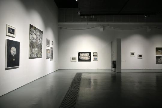 """蜂巢当代艺术中心最新推出的展览""""开封抑郁症:王顷 2008-2016""""个展"""