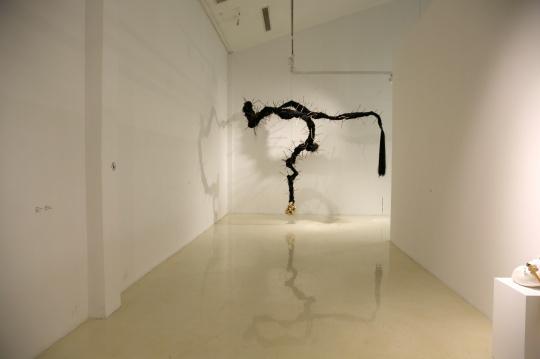 展览呈现了青年艺术家爱宋戈文近两年的装置及架上作品
