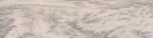 梅婉婷《寒潇秋域之三》25×102cm 纸本浅绛 2014