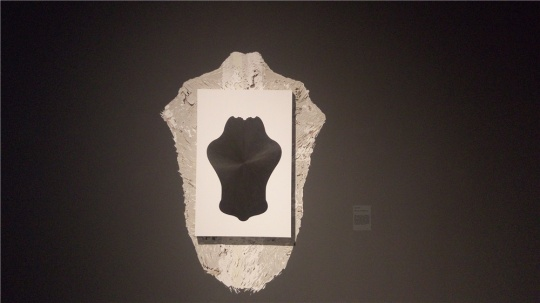 任瀚 《镜子》系列 82×53cm 纸上铅笔裱木板 2015