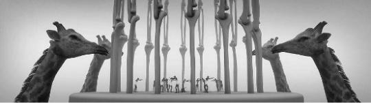 田晓磊 《关系》|video |11m07s| 2013