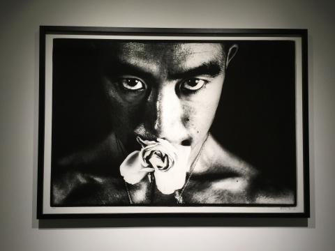 细江英公 《蔷薇刑》100×150cm 银盐相纸1961 版本5