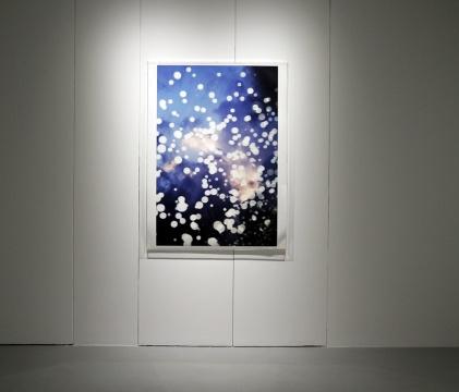 水谷吉法 《摇蚊》 80x53.3cm数码色素冲印、德国哈曼艺术纸 2014