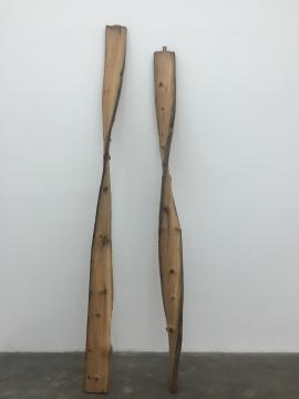 郭工 《木板》 342×22×22cm×2旧木梁 2015