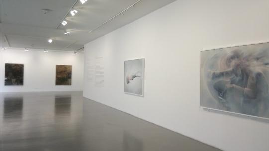 一层展厅宋琨作品(右一、右二)