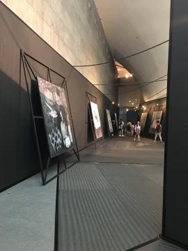 展览现场的罗杰作品