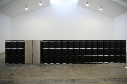 《塔克拉玛干计划》由冰箱与切割成冰箱等高的电缆线组成