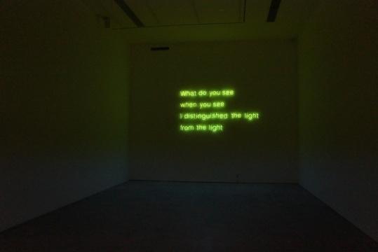 《从光中分辨光》 130×240cm 霓虹灯管 2013