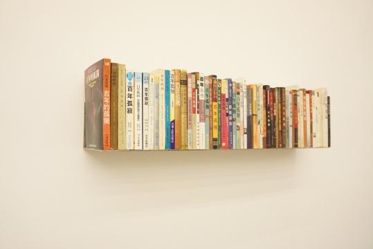 《百年孤独》 25×93×17cm 装置、书 2013-2016
