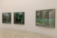作为主观的景态:七位艺术家镜头下的自然亮相上海摄影艺术中心,倪有鱼,史国威,哈里·卡拉汉,罗永进