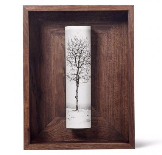 蜂巢当代艺术中心 蔡东东 《一棵树》 39×30×9cm(外框尺寸) 明胶卤化银照片,黑胡桃木 2015 价格:36,000(版数6/6)