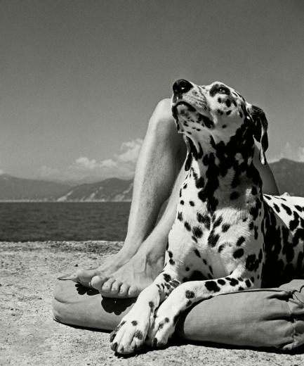Magnum Photos Herbert List,Portofino,12×16,Silver Gelatin Print,1936 该画廊已是连续三届亮相影像上海了