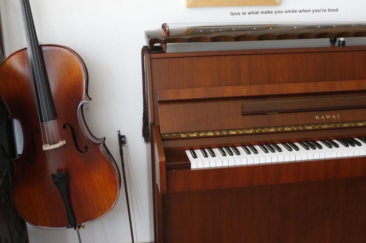 张锰收藏的乐器,他影像作品中细碎的配乐都出自自己和这些乐器。