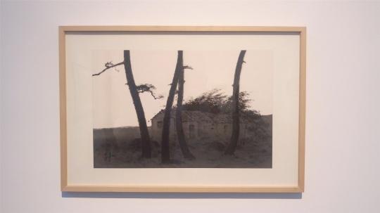 文凤宣 《朝》 46×70cm 纸本水墨 2005