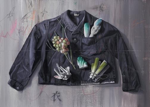 《植物学.J-有植物图案的衣服》53×72cm 布面油画2016