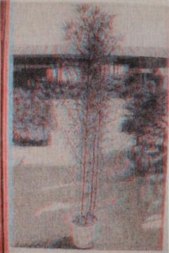石井友人 《无题 》227x162cm布面油画 2016