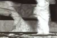 谷文达 我所关注的是如何作为一个有文化属性的艺术者