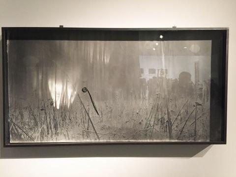 《荒芜的风景》 65 × 125 cm 照片和各式物品 1982(MAP 收藏)