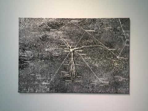《猎户座》208×299×24cm 丙烯酸、铅、树根、木头、艺术家金属框 2004