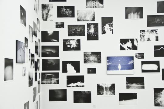 展览现场的照片墙
