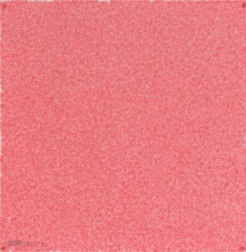 张羽 《指印39小时》75×75cm 宣纸植物颜料 2004