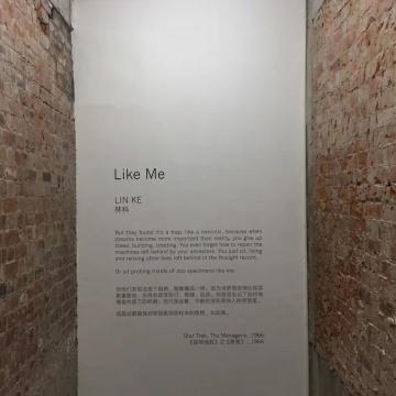 """展览""""扉页"""",正对画廊入口"""