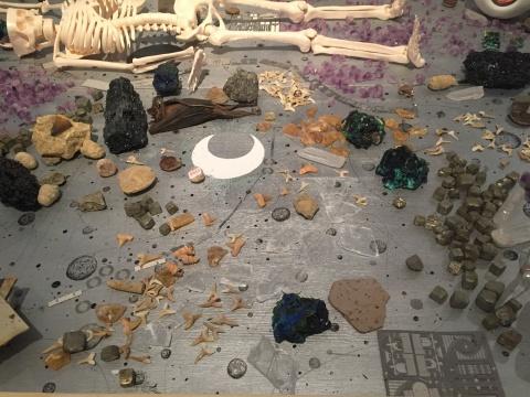 台面上的动物(昆虫、禽类)标本、人体器官模型、化石、水钻