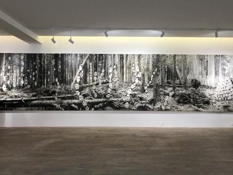 "Hadrien de Montferrand画廊陆超最新个展""黑匣子""现场"