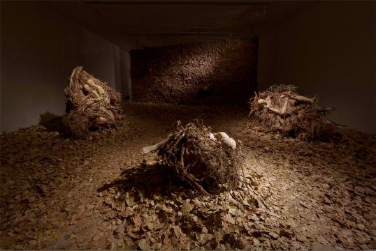 杨淞依据树根的形状塑造的人形