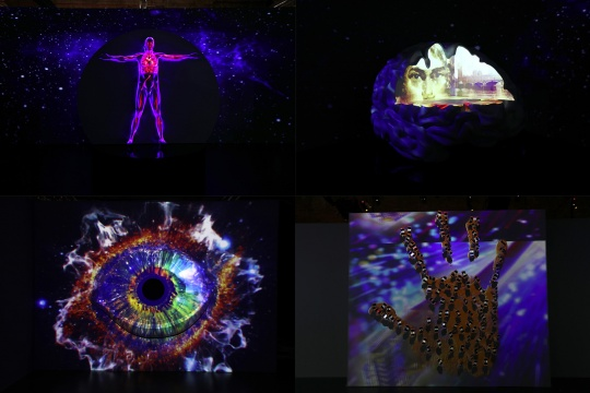 多媒体展品《天人合一-眼、脑、手、人体》