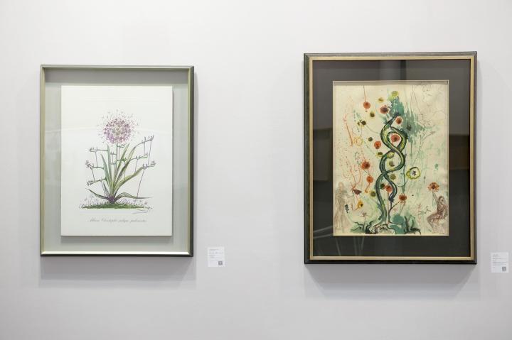 达利《生命之树》(右)57x77cm羊皮纸、原版雕刻、平版印刷、丝网印刷+半宝石44/2251975