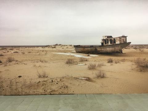 《游移湖》400×600cm 彩色喷墨打印 2015