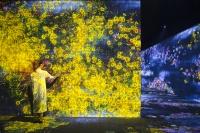 Teamlab国内首展亮相佩斯北京,高科技昭示的那些艺术未来