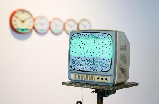 杨健 《我们比从前更愚蠢吗?》31 x 31 x 27 cm 电视、丙烯 2013