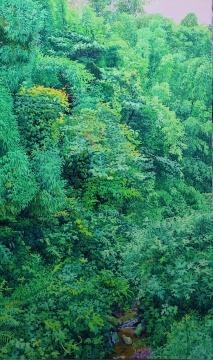 《滴翠》150x90cm布面油画 2013