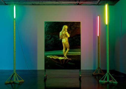 仇晓飞《奥特莱斯的维纳斯》480×470×358cm布面油画、灯光、木2013  成交价:149.5万元(估价:80万-120万元,北京保利,王兵竞得)